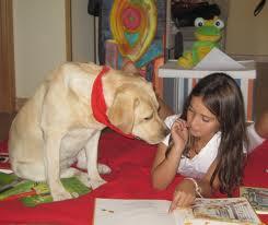 Nuevo taller de lectura emocional con perros en Galapagar