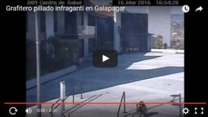 grafitero-pillado-galapagar