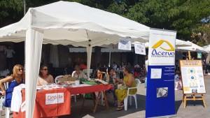 Feria-del-voluntariado-Galapagar-3